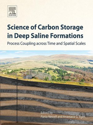 cover image of Science of Carbon Storage in Deep Saline Formations