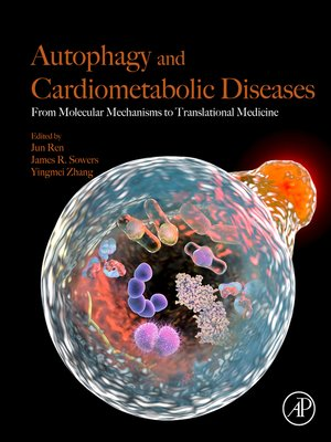 cover image of Autophagy and Cardiometabolic Diseases