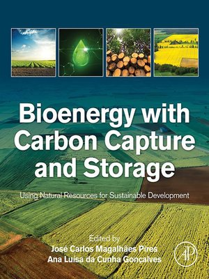 cover image of Bioenergy with Carbon Capture and Storage