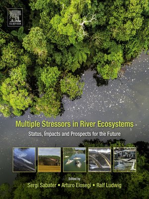 cover image of Multiple Stressors in River Ecosystems