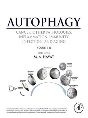 cover image of Autophagy
