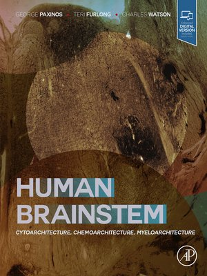 cover image of Human Brainstem