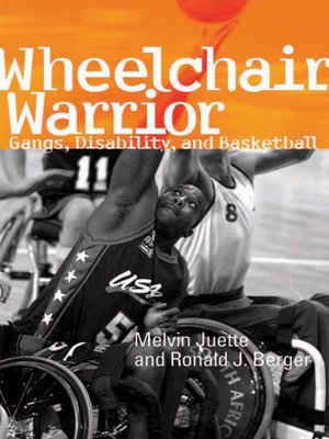 cover image of Wheelchair Warrior