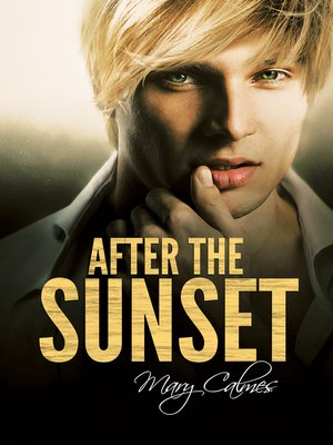 cover image of After the Sunset