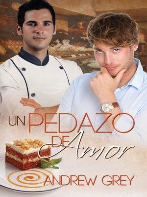 cover image of Un pedazo de amor