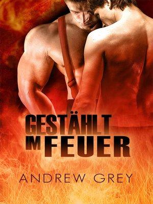 cover image of Gestählt im Feuer
