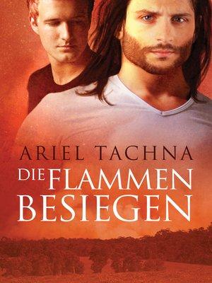 cover image of Die Flammen besiegen