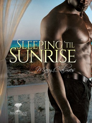 cover image of Sleeping 'Til Sunrise