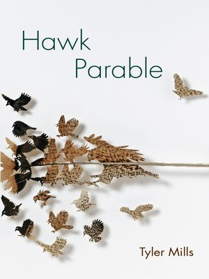cover image of Hawk Parable