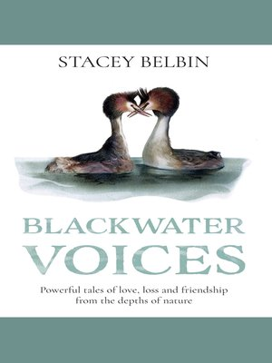 cover image of Blackwater Voices