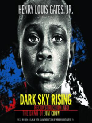 cover image of Dark Sky Rising