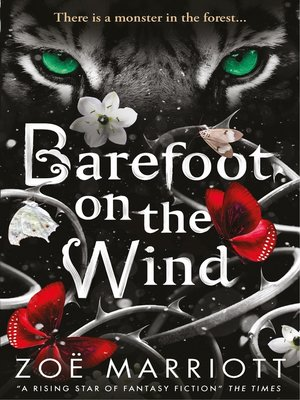 cover image of Barefoot on the Wind