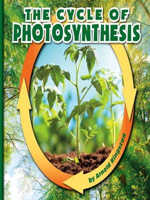 cover image of The Cycle of Photosynthesis
