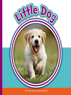 cover image of Little Dog