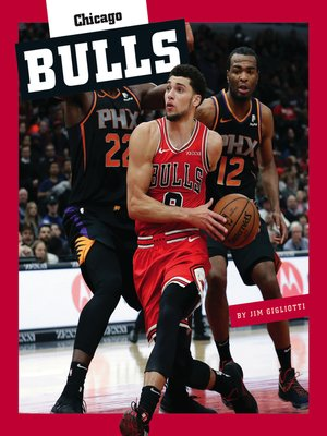 cover image of Chicago Bulls