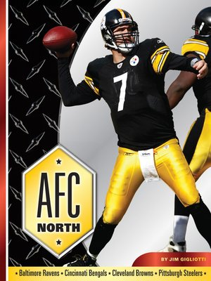 cover image of AFC North