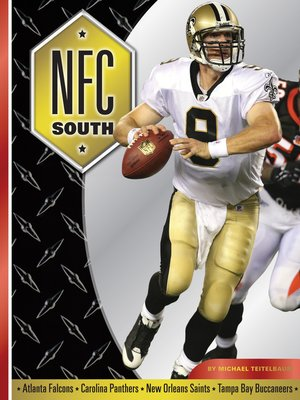 cover image of NFC South