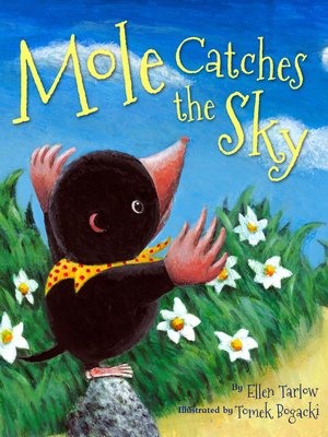 cover image of Mole Catches the Sky