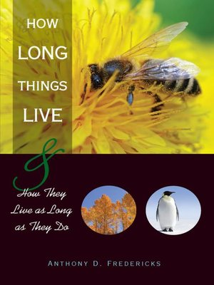 cover image of How Long Things Live