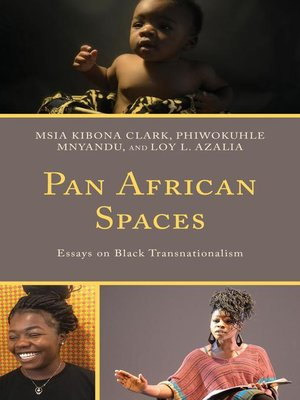 cover image of Pan African Spaces