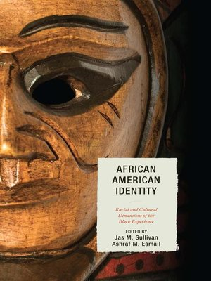 cover image of African American Identity