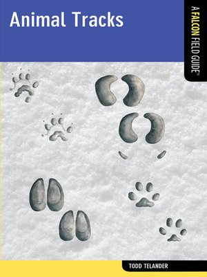 cover image of Animal Tracks