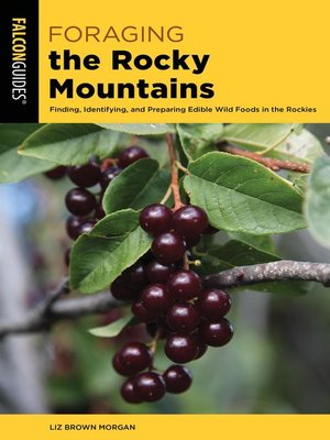 cover image of Foraging the Rocky Mountains