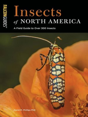 cover image of Insects of North America