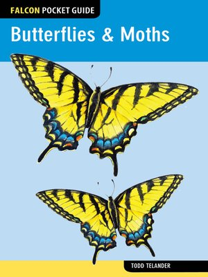 cover image of Butterflies & Moths