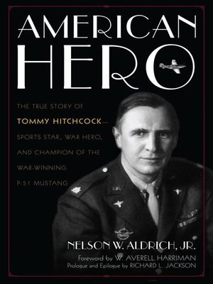 cover image of American Hero