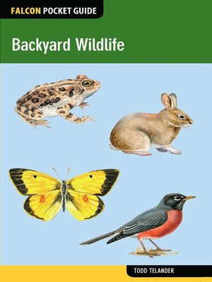 cover image of Backyard Wildlife