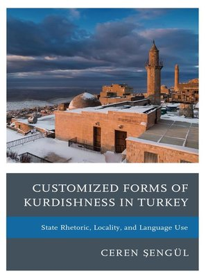 cover image of Customized Forms of Kurdishness in Turkey