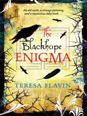 cover image of The Blackhope Enigma