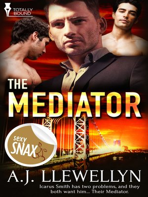 cover image of The Mediator