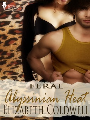 cover image of Abyssinian Heat