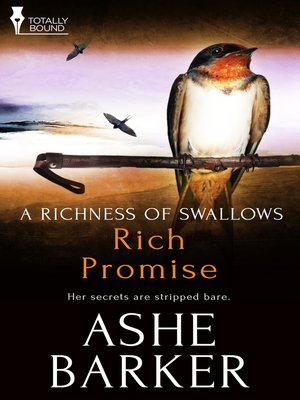 cover image of Rich Promise