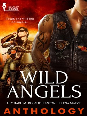 cover image of Wild Angels