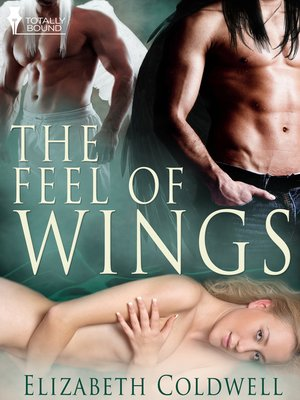 cover image of The Feel of Wings