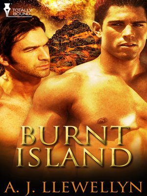 cover image of Burnt Island