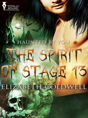 cover image of The Spirit of Stage 13