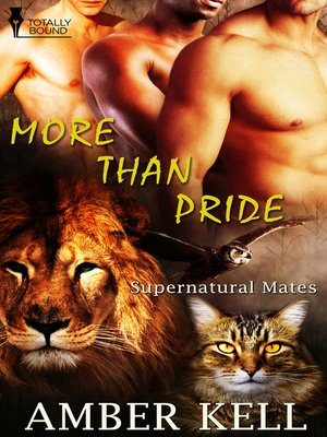 cover image of More Than Pride