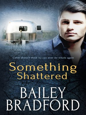 cover image of Something Shattered