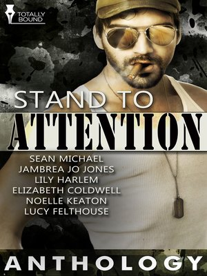 cover image of Stand to Attention