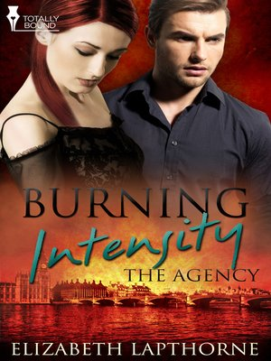 cover image of Burning Intensity