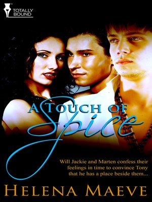 cover image of A Touch of Spice