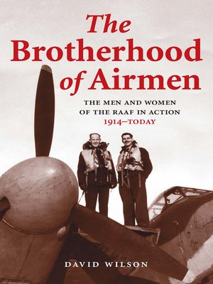 cover image of The Brotherhood of Airmen