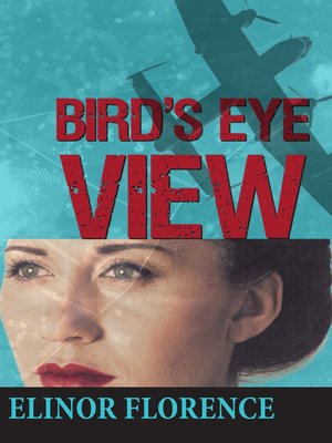 cover image of Bird's Eye View