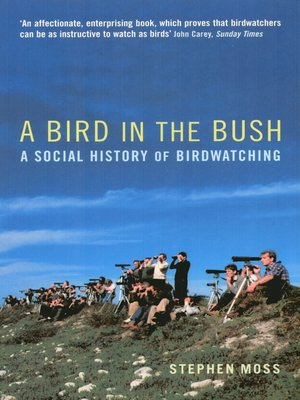 cover image of A Bird in the Bush