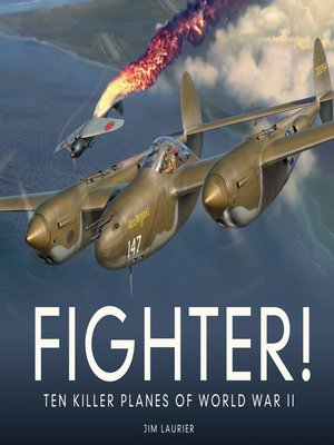 cover image of Fighter!