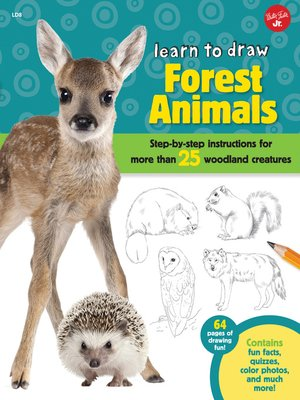 cover image of Learn to Draw Forest Animals